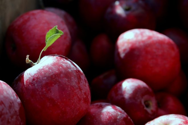 Des pommes.
