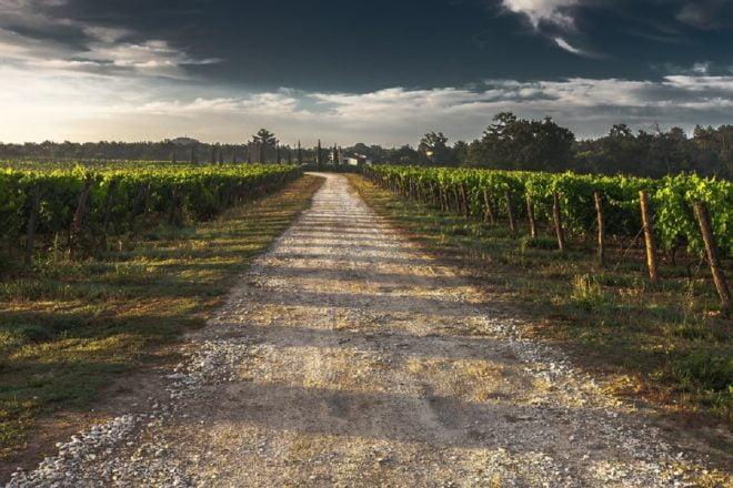 Un chemin en campagne