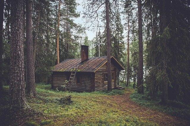 L'isolement dans une forêt.