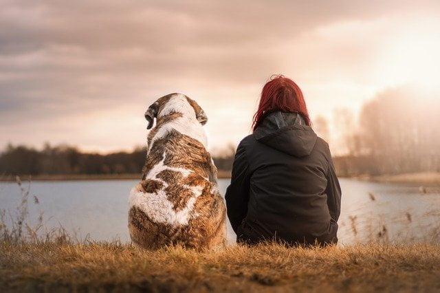Un chien et une femme assis.