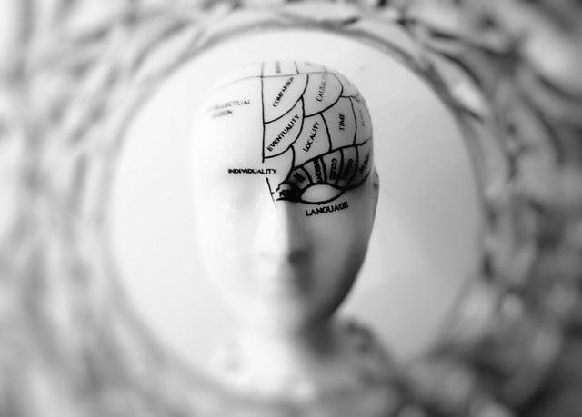 Les tâches ménagères favorisent la croissance du cerveau.