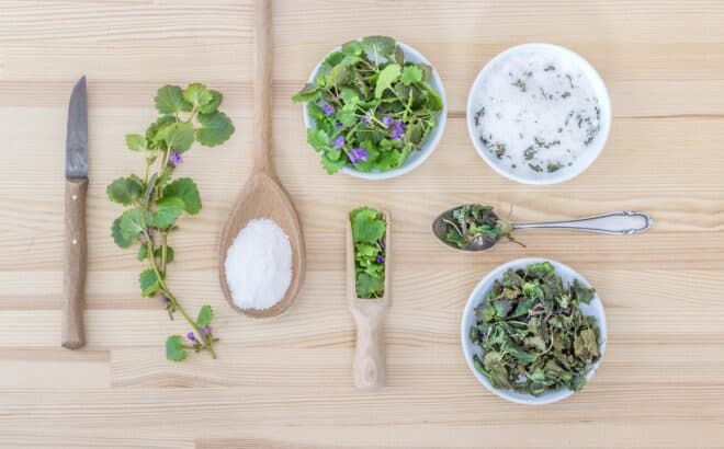 Herbes et épices fraîches