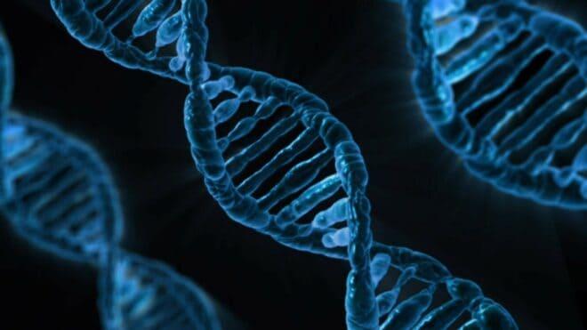 Photo d'illustration. Un brin d'ADN.